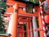 fushimi-inari-taisha-kyoto-entree-chemin-grand-torii
