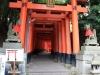 fushimi-inari-taisha-kyoto-tunnel-torii-garde-inari
