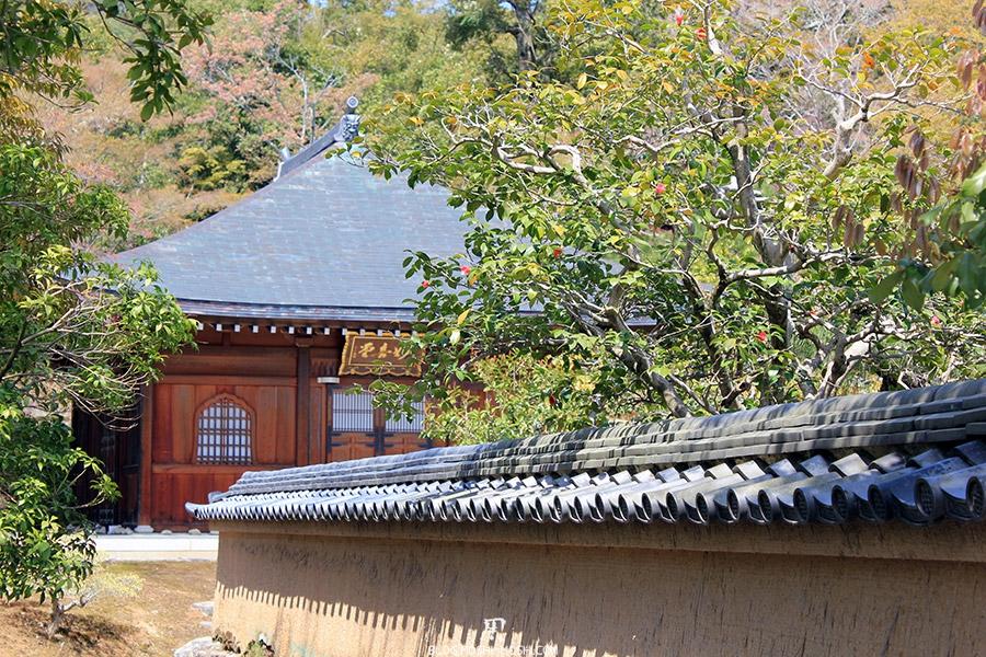 kinkaku-ji-temple-or-kyoto-saison-sakura-long-mur-tuiles-japonaise