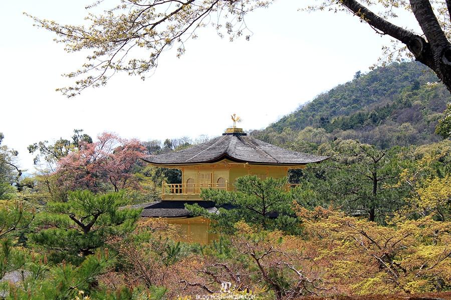 kinkaku-ji-temple-or-kyoto-saison-sakura-vue-de-haut