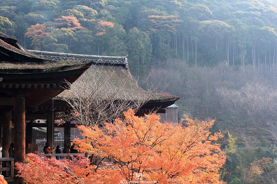 sanctuaire-kiyomizudera-kyoto-saison-momiji-vue-cote-plateforme-entree
