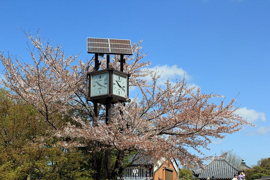 kiyomizudera-sanctuaire-kyoto-saison-sakura-horloge-solaire-dans-cerisiers