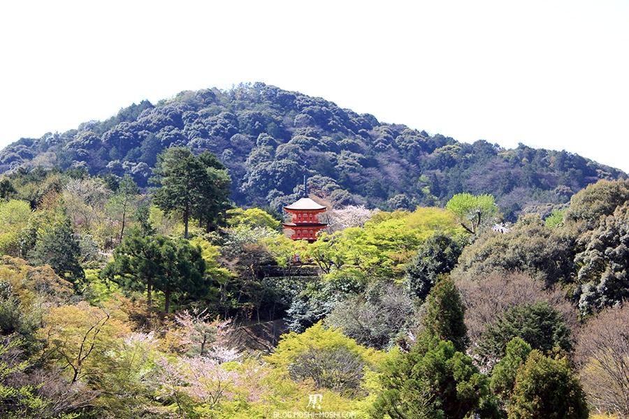 kiyomizudera-sanctuaire-kyoto-saison-sakura-pagogue-vegetation