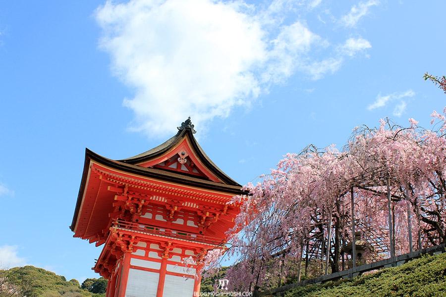 kiyomizudera-sanctuaire-kyoto-saison-sakura-porte-entree-cerisier-pleurant