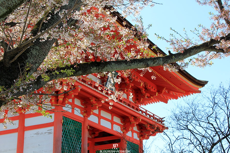 kiyomizudera-sanctuaire-kyoto-saison-sakura-porte-travers-cerisiers
