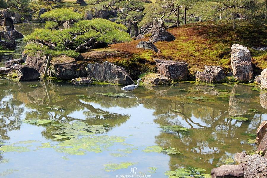 nijo-jo-chateau-kyoto-saison-sakura-etang-grue-royale-japonaise