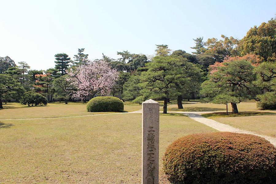 nijo-jo-chateau-kyoto-saison-sakura-jardins-verdure-cerisier-rose