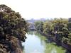nijo-jo-kyoto-jardin-fond-douves-vue-hauteur