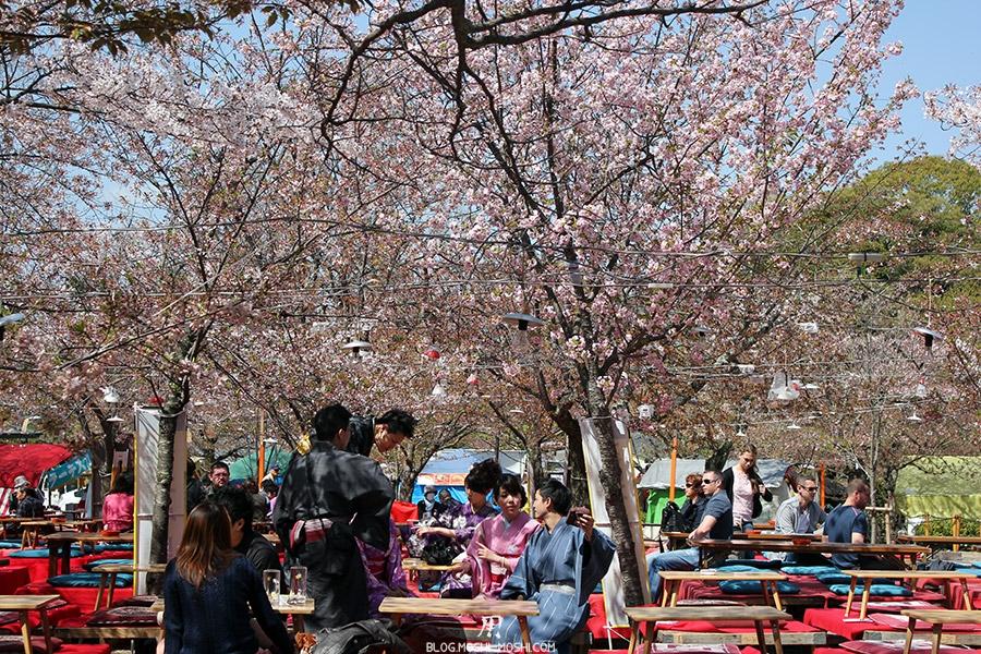 parc-maruyama-kyoto-saison-sakura-hanimi-kimono-pic-nic-gaijin