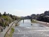 sur-la-route-gion-centre-kyoto-riviere-kamogawa-cerisiers-fleuris