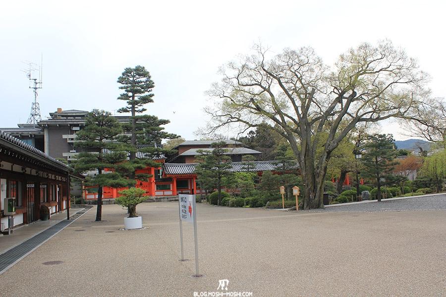temple-sanjusangendo-kyoto-saison-sakura-cours-entree-deserte