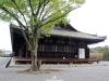 temple-sanjusangendo-kyoto-saison-sakura-fond-plus-long-batiment-au-monde-de-bois
