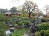 temple-sanjusangendo-kyoto-saison-sakura-petit-etang-jardin