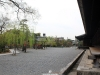 temple-sanjusangendo-kyoto-saison-sakura-vue-jardin-cote-batiment