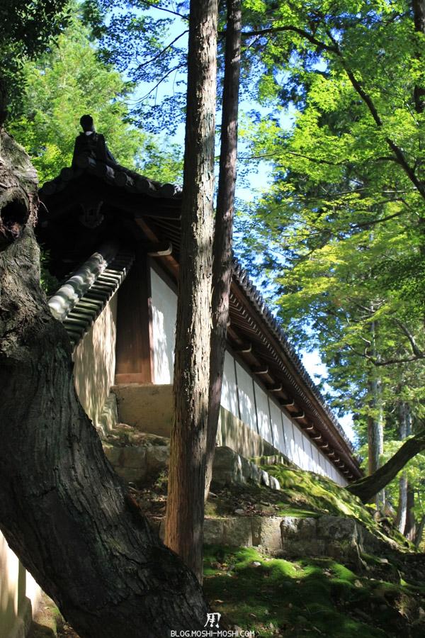 tofuku-ji-kyoto-muraille-verdure