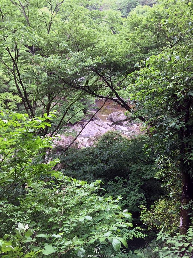 daigo-cascade-fukuroda-riviere-a-travers-vegatation
