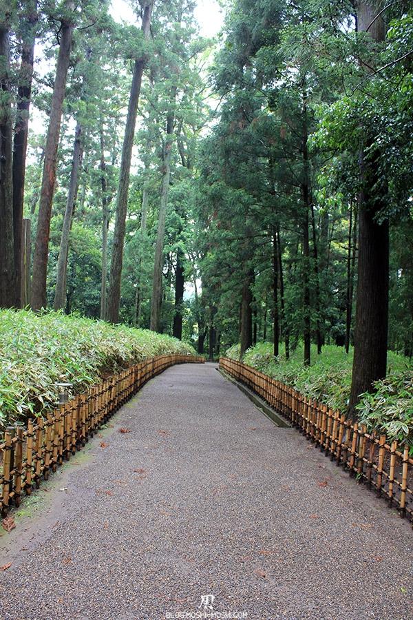 jardin-japonais-kairaku-en-chemin-pins