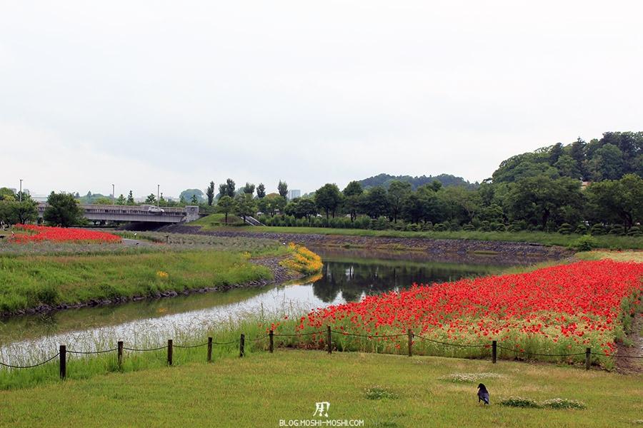kairakuen jardin-japonais-kairaku-en-cote-champs-fleurs-riviere-tulipe