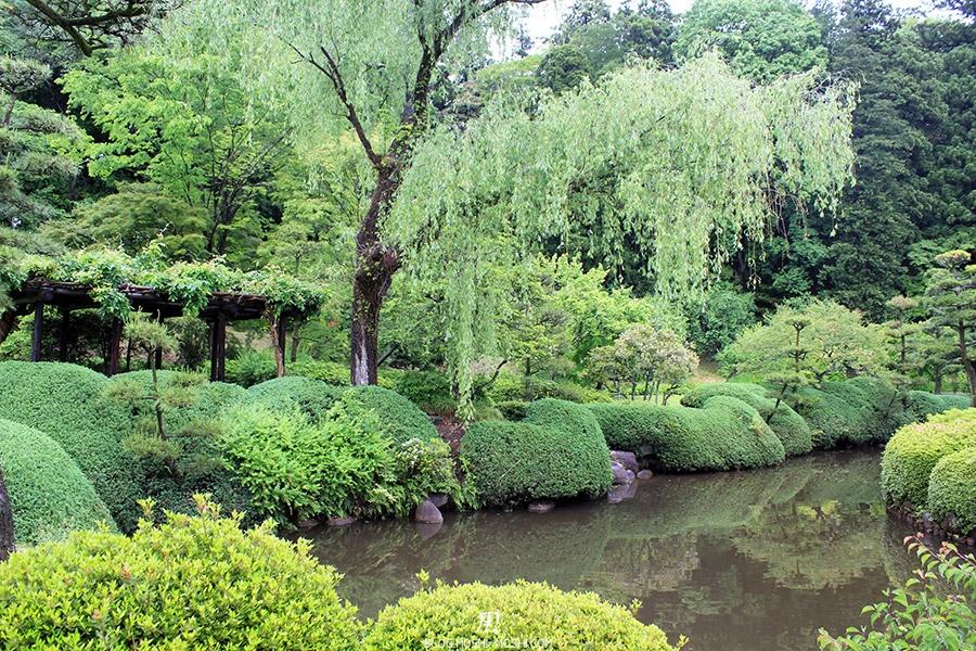 jardin-japonais-kairaku-en-cote-jardin-japonais-arbustes-bien-tailles