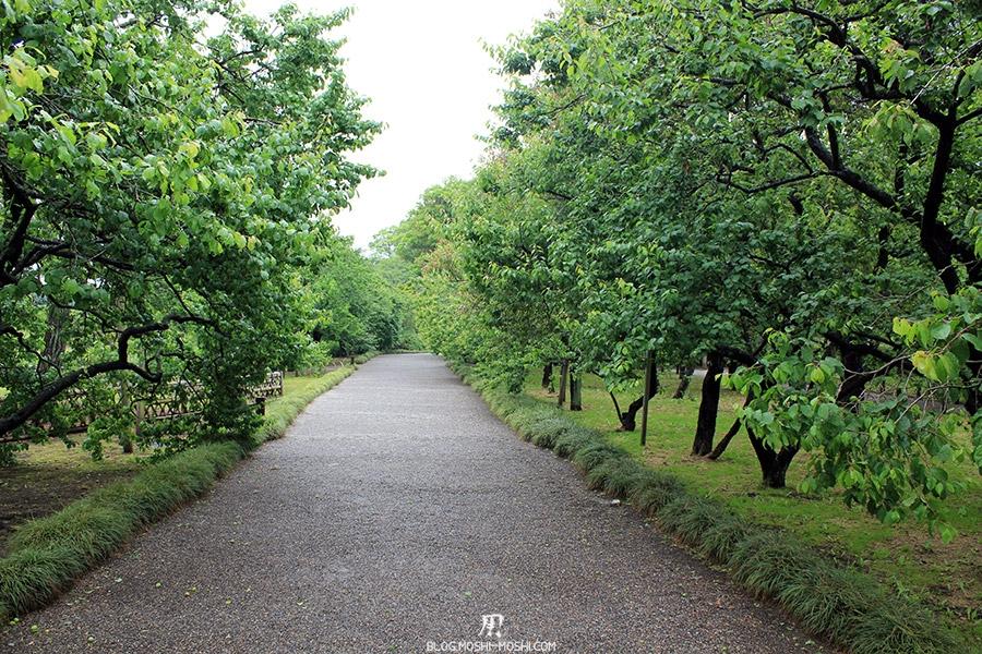 jardin-japonais-kairaku-en-hauteurs-allee-pruniers