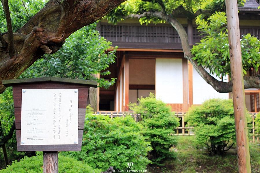jardin-japonais-kairaku-en-hauteurs-arbre-300-ans-ancienne-maison