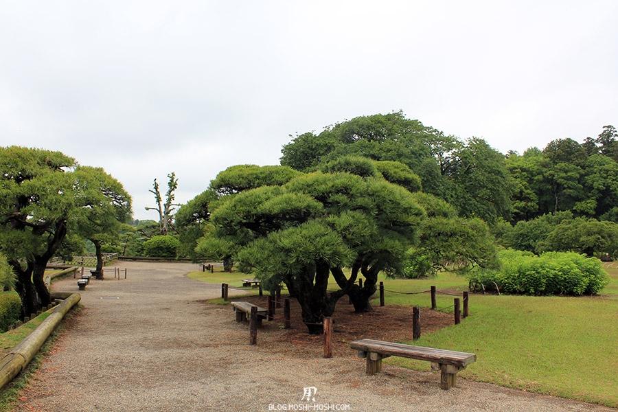 jardin-japonais-kairaku-en-hauteurs-pins