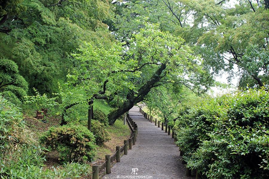 jardin-japonais-kairaku-en-sentier-entre-arbre