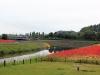 jardin-japonais-kairaku-en-cote-champs-fleurs-riviere-tulipe