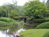 jardin-japonais-kairaku-en-cote-jardin-japonais-etang-pont-arbustes