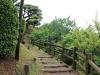 jardin-japonais-kairaku-en-escalier-bois-coline