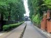 jardin-japonais-kairaku-en-longue-allee-promenade-chien