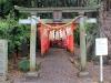 jardin-japonais-kairaku-en-sanctuaire-tokiwa-jinja-torii-enchainement-mini-torii