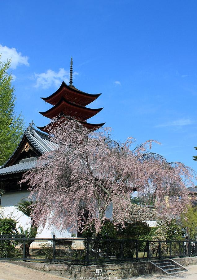 Miyajima-Hiroshima-saison-sakura-cerisier-pieds-pagode