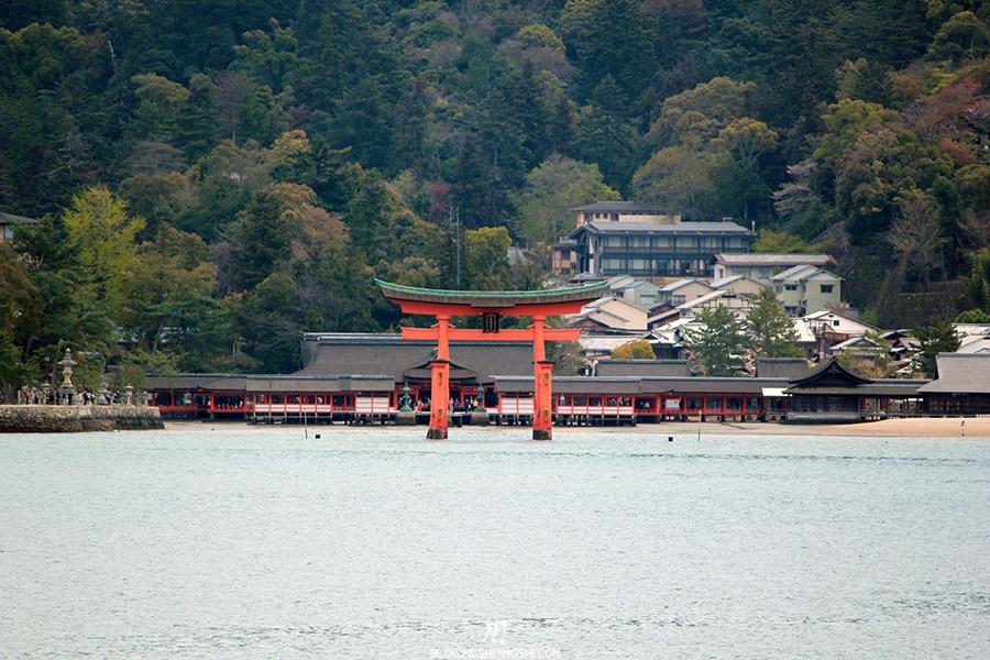 miyajima-hiroshima-saison-sakura-grand-torii-centre-Itsukushima-jinja