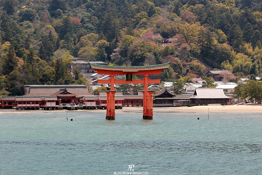 miyajima-hiroshima-saison-sakura-grand-torii-maree-haute