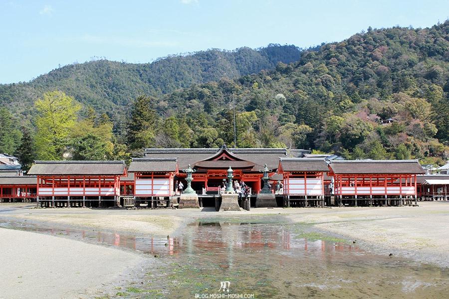 miyajima-hiroshima-saison-sakura-maree-basse-sanctuaire-Itsukushima-gros-plan