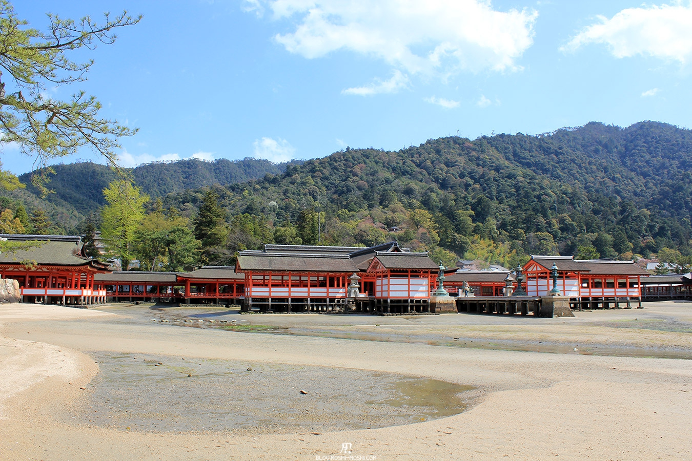 miyajima-hiroshima-saison-sakura-maree-basse-sanctuaire-Itsukushima