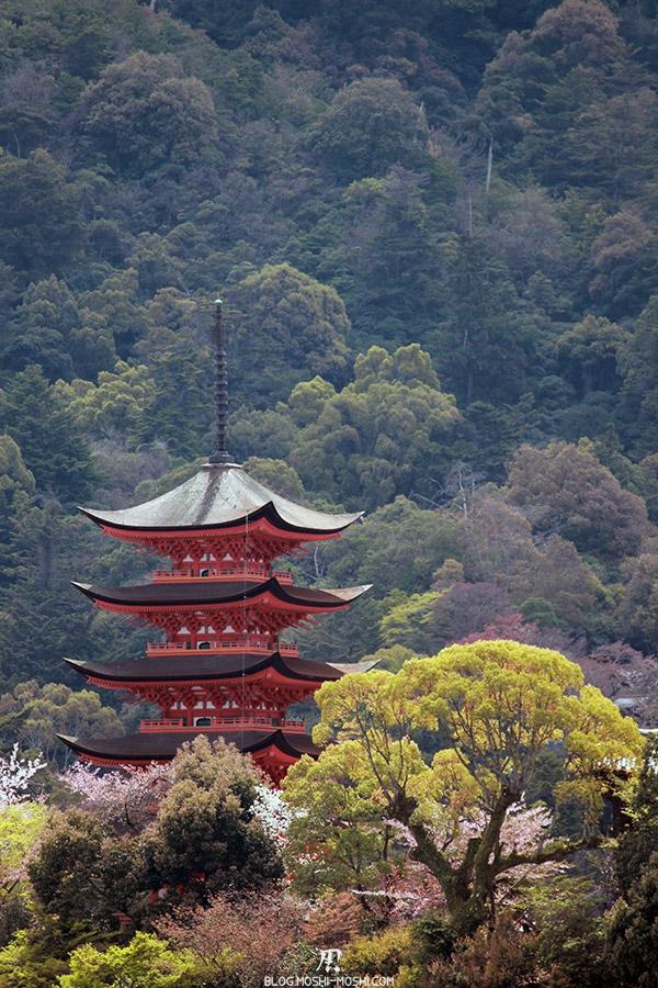 miyajima-hiroshima-saison-sakura-pagode-bois-cerisiers