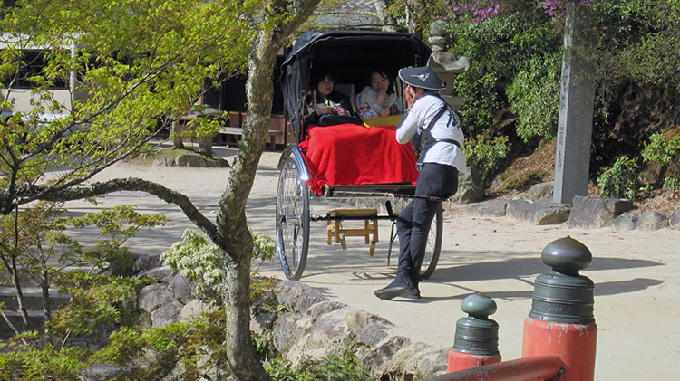 Miyajima-Hiroshima-saison-sakura-parc-momijidani-beau-parleur-pousse-pousse