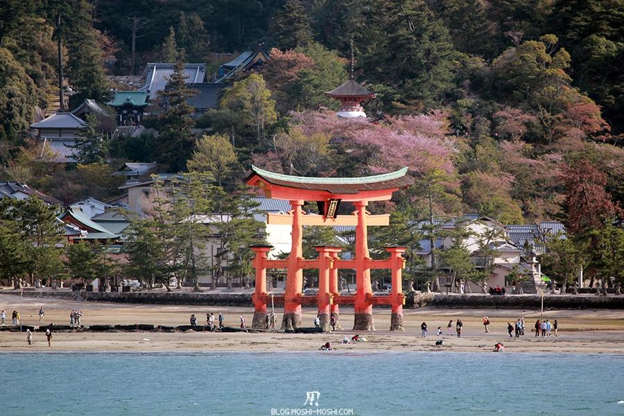 miyajima-hiroshima-saison-sakura-plage-grand-torii-pagode