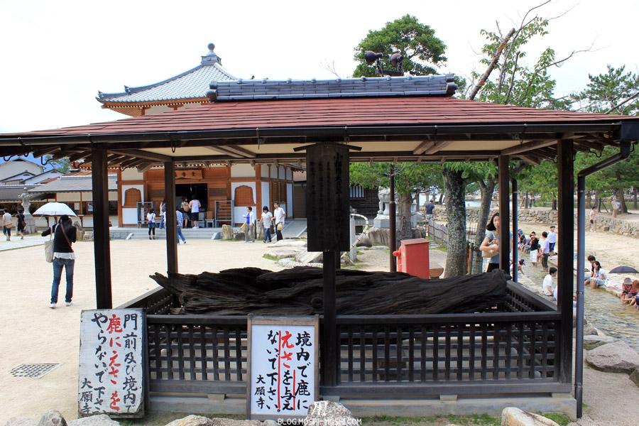 ile-miyajima-bois-trempe