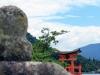 ile-miyajima-apercu-grand-torii