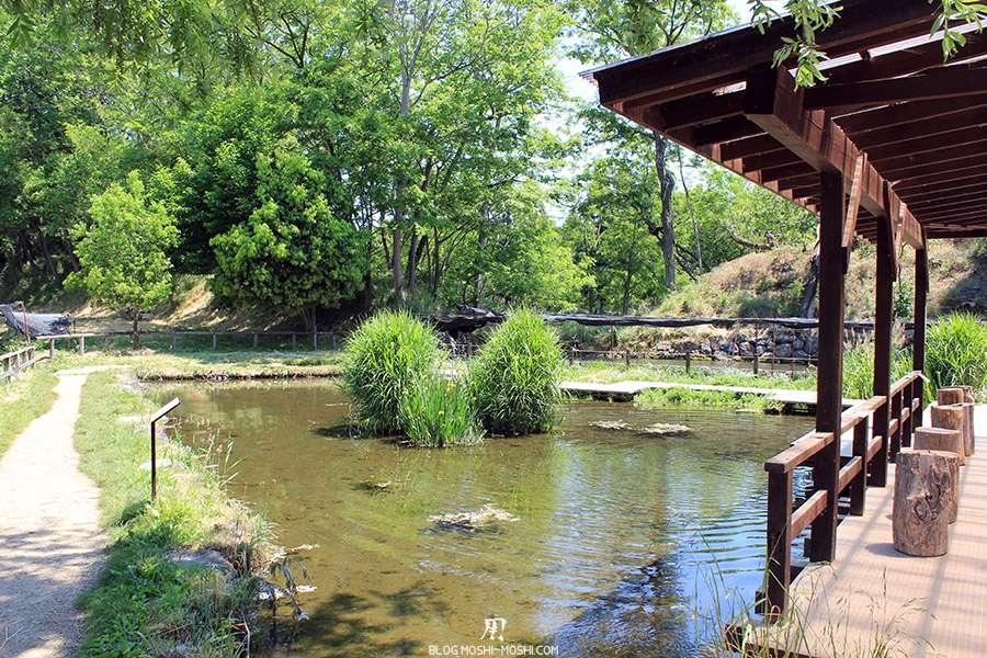 Nagano-plantation-wasabi-ferme-Wasabi-lieu-repos-mare