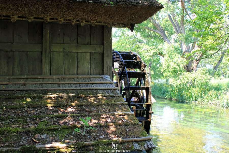 Nagano-plantation-wasabi-ferme-Wasabi-moulin-derriere