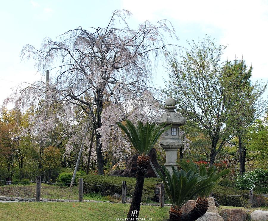 tokugawaen-parc-nagoya-cerisier-lanterne-japonaise-palmiers