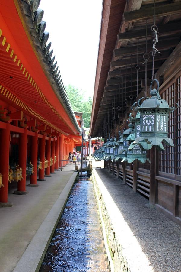 kasuga-taisha-Nara-ruisseau-lanternes-zen
