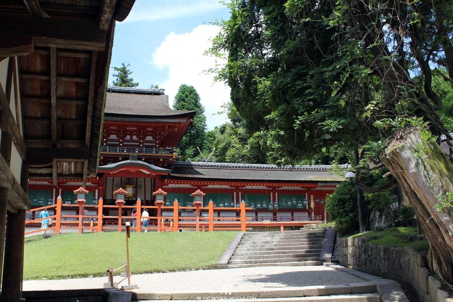 kasuga-taisha-Nara-toits-chaume