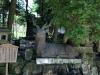 kasuga-taisha-Nara-fontaine-cerf
