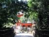 kasuga-taisha-Nara-foret-lanternes