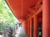 kasuga-taisha-Nara-pilliers-lanternes
